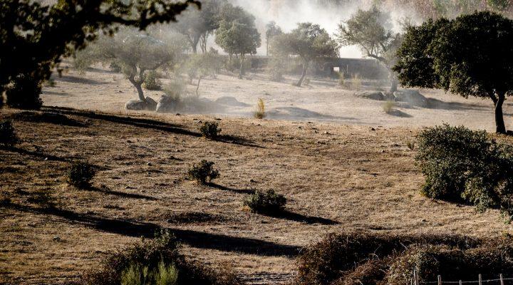 Vorschau Baja Portalegre 500 – Spannendes Saisonfinale in Portugal